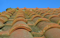 Close-up of red roman roof tiles. Shallow depth of field Stock Photos
