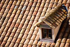 Close up of red roof and tiles Stock Images