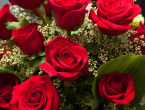 Close up of red rose bouquet with roses Stock Photography