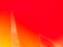 Close up of red rose petal Royalty Free Stock Photography