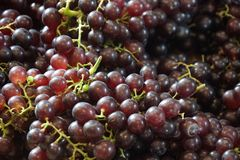 Close up of red seedless grapes. Close up of fresh red seedless grapes stock photos