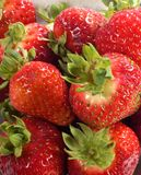 Close up of red strawberries. Stock Image