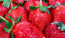 Close-up of red strawberry Royalty Free Stock Image