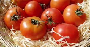 Close up of red tomatoes stock video footage