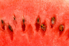 Close up of the red watermelon Royalty Free Stock Photo