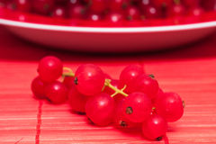 Close up of redcurrants Stock Image