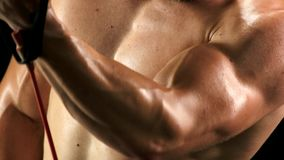 Close up relief biceps of young sportsman. Muscular chest of sporty man. Bodybuilder training close up stock video