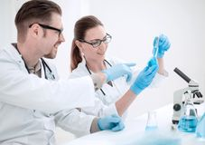 Close up.researchers are discussing the results of experiments royalty free stock photo