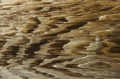 Close up of retro-styled wooden texture. For design stock photos