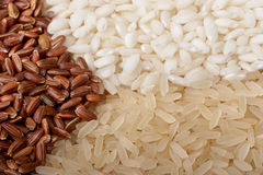 Close-up of rice (macro, three colors). Rice, macro Stock Image