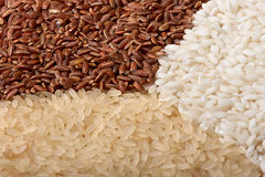 Close-up of rice (macro, three colors) Stock Photography