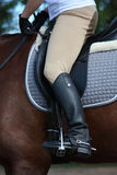 Close up of rider leg Stock Image