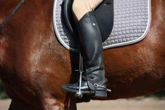 Close up of rider leg Stock Photos
