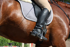 Close up of rider leg Stock Images