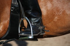 Close up of rider leg with spur in stirrup Stock Photo