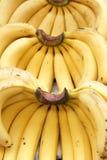 Banana. The close-up of ripe banana Stock Photo