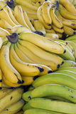 Close-up of ripe bananas Royalty Free Stock Images