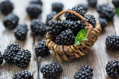 Close-up of ripe blackberries in a tiny basket stock photos