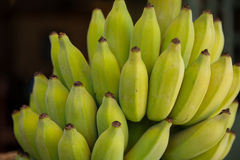 Close Up of a Ripe Bunch of Colorful Bananas. A close up shot of a ripe bunch of colorful bananas on the island of Kauai, Hawaii Stock Images