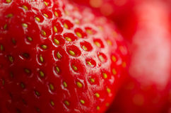 Close up of ripe clean Strawberries Royalty Free Stock Photos