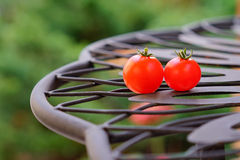 Close up of ripe Garden tomato Stock Photos