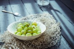 Close up ripe Green fresh gooseberry in ceramic bowl on rustic black wooden kitchen table back lightened by morning light. Farmer. Harvest, local market stock photography