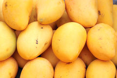 Mango. The close-up of ripe mango Stock Photo