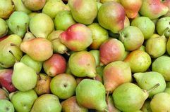 Close-up of ripe organic pears Stock Images