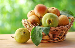 Close up of ripe pears. On basket Royalty Free Stock Photos