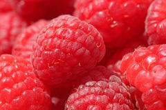 Close up of raspberry Royalty Free Stock Image