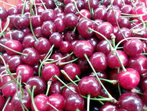 Close up of ripe red cherries Royalty Free Stock Photography