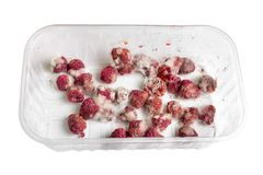 Close-up ripe red rotten raspberry with white grey mold on it. Spoiled berry in plastic box. Isolated on white Stock Photos