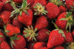Ripe strawberries in close up stock images