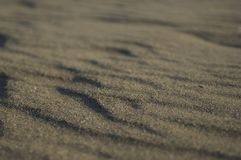 A close-up of rippling beach sand. royalty free stock image