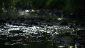Close-up Of River Flowing Over Rocks stock footage