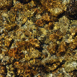 Close-up of riverbed through clear water flowing Royalty Free Stock Photography