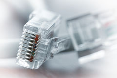 Close up of RJ45 Plug Lan Network on wood desk Royalty Free Stock Image