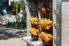 Close up Roasted chickens. Roasted chickens in a row in a shop roaster royalty free stock image