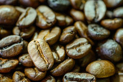 Close up of  roasted coffee bean Royalty Free Stock Photos