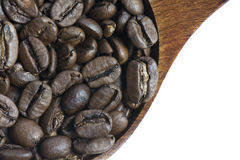 Close up Roasted Coffee Bean on White Background Royalty Free Stock Image