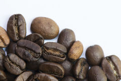 Close up Roasted Coffee Bean. Close-up roasted whole coffee bean on white background Royalty Free Stock Photography