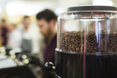 Close up of roasted coffee beans in a grinder Royalty Free Stock Photography