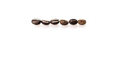 Close Up of Roasted Coffee Beans Isolated on White Background Stock Image