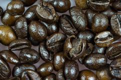 Close Up of Roasted Coffee Beans Isolated on White Background Royalty Free Stock Image