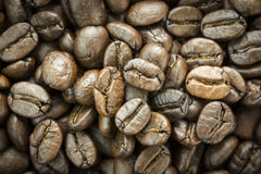 Close up of roasted coffee beans, selective focus. Royalty Free Stock Photo
