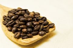 Close up of roasted coffee beans on a wood spoon with white back. Ground with space for text Royalty Free Stock Images