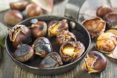 Close up Roasted das castanhas em uma frigideira Fotos de Stock Royalty Free