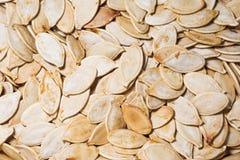 Close-up Roasted das sementes de abóbora imagens de stock royalty free