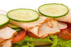 Close up of roasted turkey sandwich Royalty Free Stock Image