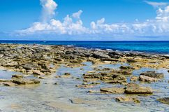 Close up of rocks in San Andres beach from Johnny Cay in a gorgeous sunny day in Colombia Stock Photo